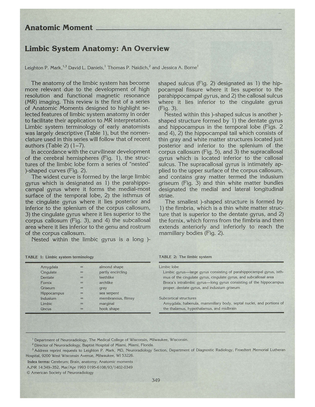 Limbic System Anatomy An Overview American Journal Of Neuroradiology