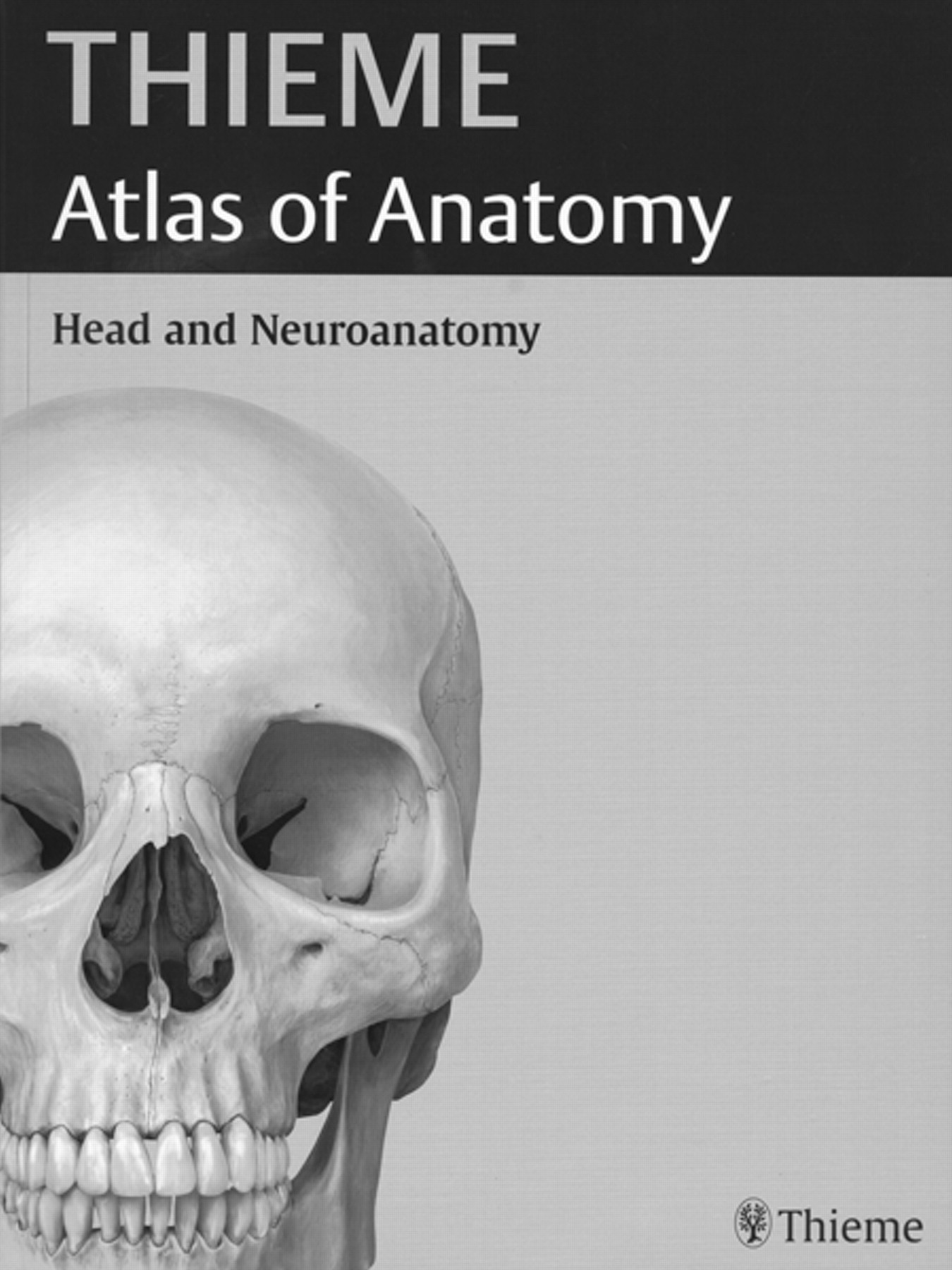 Head And Neuroanatomy Thieme Atlas Of Anatomy American Journal Of