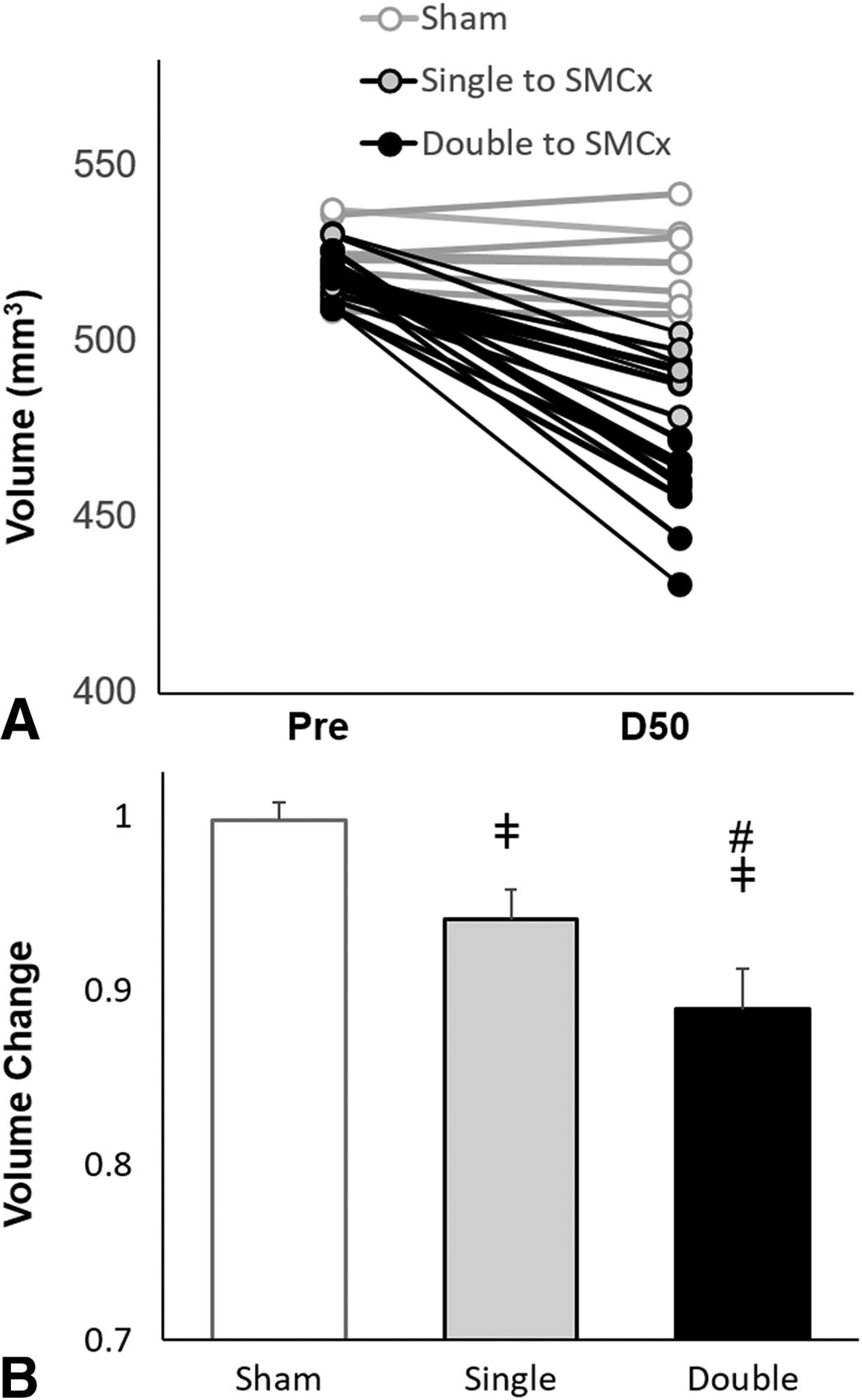 Behavioral and Structural Effects of Single and Repeat Closed-Head